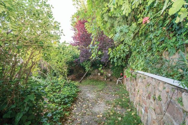 back-garden-203