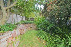 garden DSC_1850