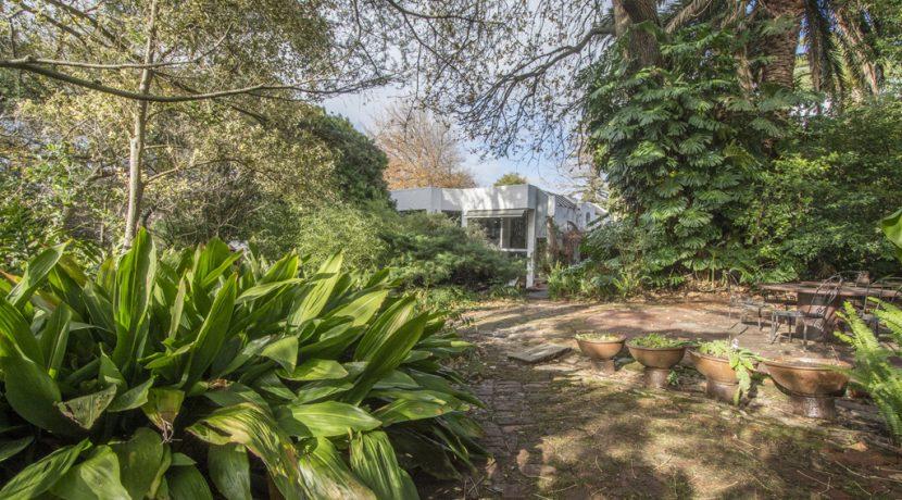 garden to home DSC_9344 (1)