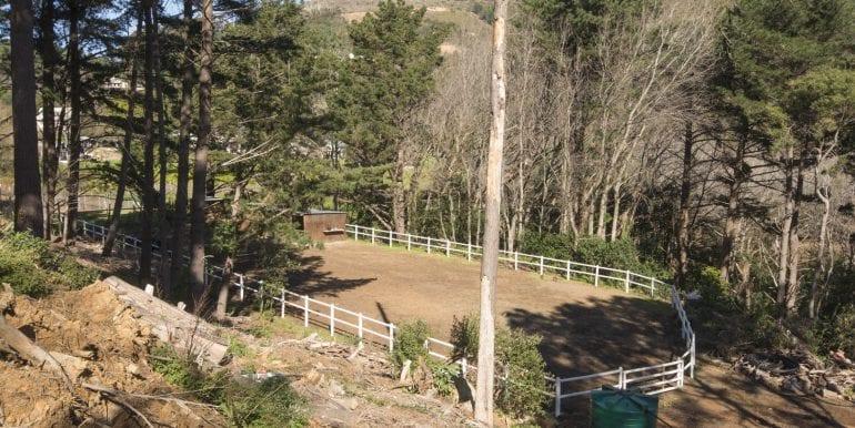 Houtbay 0571 paddock